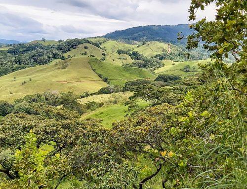 Quintas en Costa Rica: todo lo que debe saber