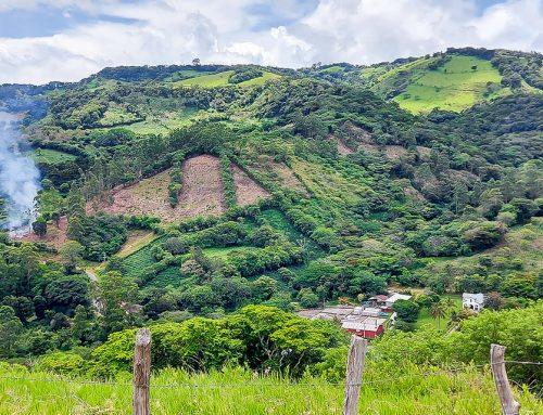 Fincas sostenibles y autosuficientes en Costa Rica